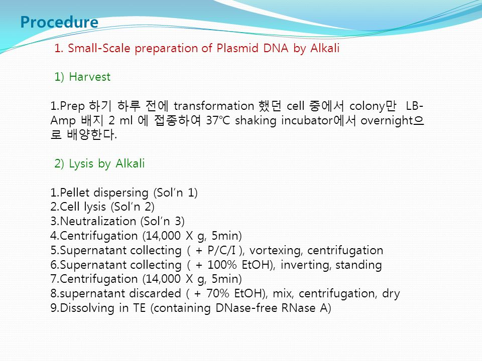 Procedure 1. Small-Scale preparation of Plasmid DNA by Alkali 1) Harvest 1.