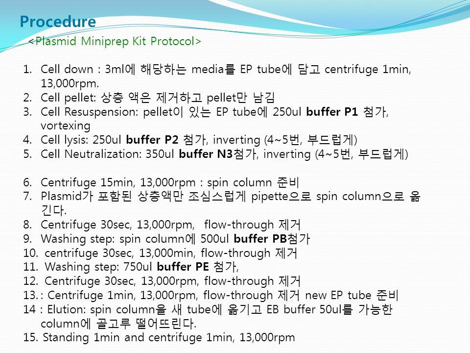Procedure 1. Cell down : 3ml에 해당하는 media를 EP tube에 담고 centrifuge 1min, 13,000rpm.