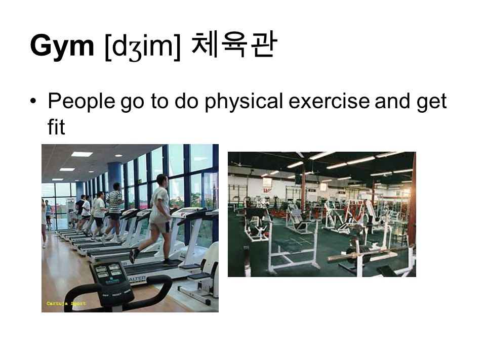 Gym [d ʒ im] 체육관 People go to do physical exercise and get fit