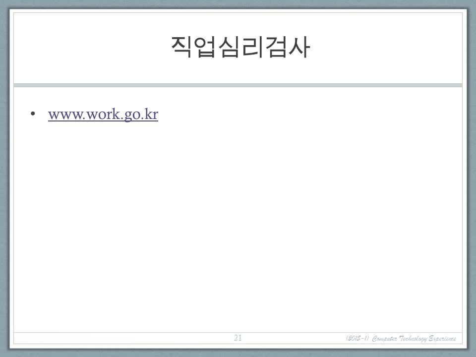 직업심리검사 www.work.go.kr (2015-1) Computer Technology Experience 21