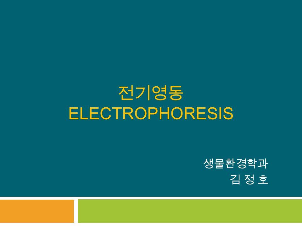 전기영동 ELECTROPHORESIS 생물환경학과 김 정 호