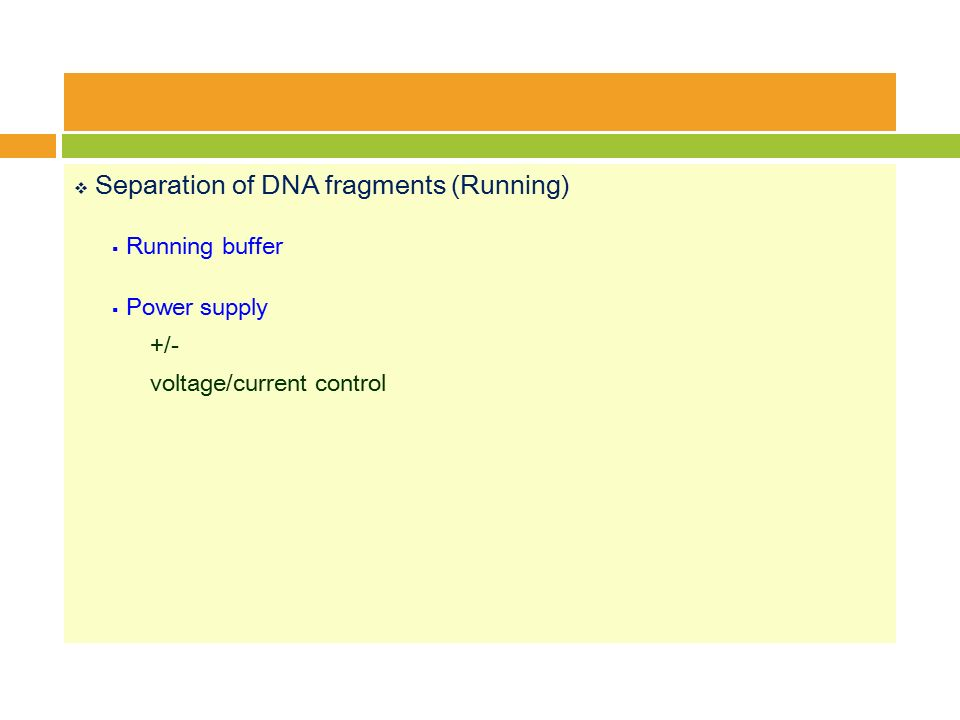  Separation of DNA fragments (Running)  Running buffer  Power supply +/- voltage/current control