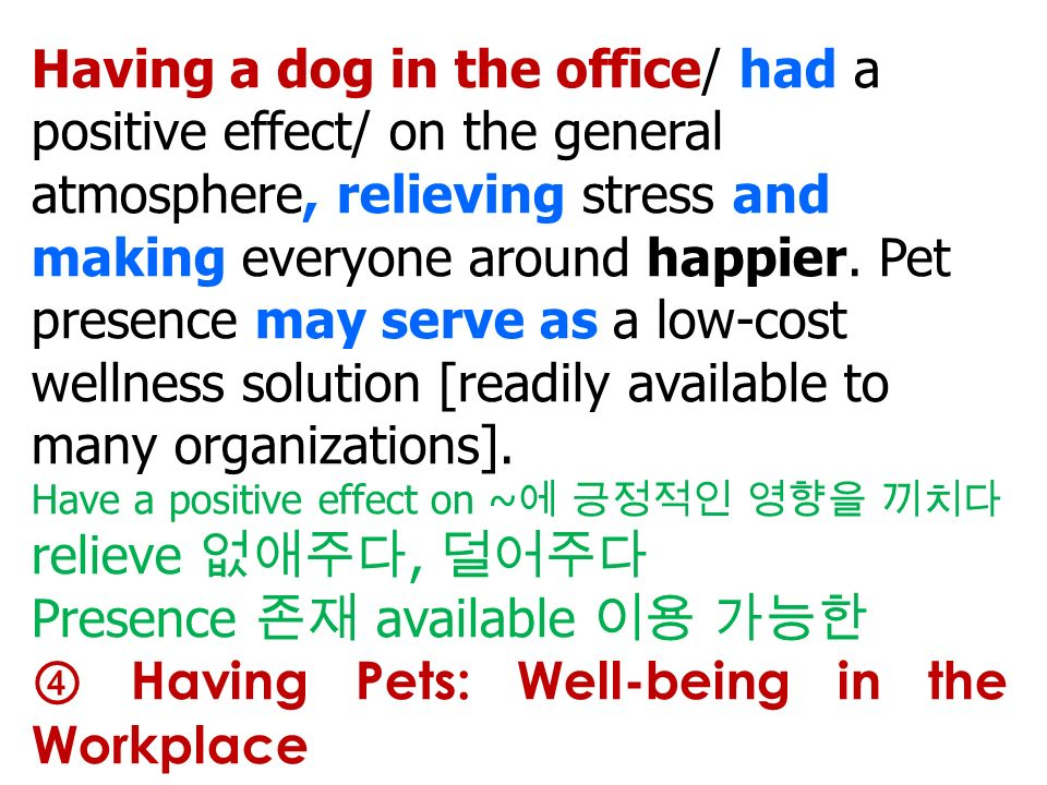 Having a dog in the office/ had a positive effect/ on the general atmosphere, relieving stress and making everyone around happier.