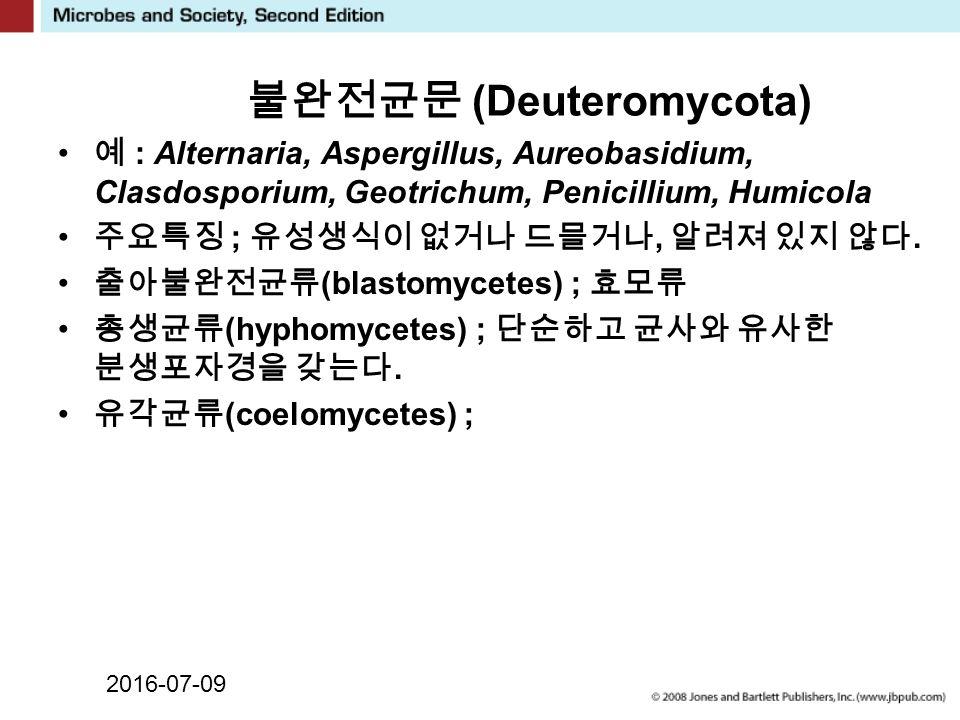 2016-07-09 불완전균문 (Deuteromycota) 예 : Alternaria, Aspergillus, Aureobasidium, Clasdosporium, Geotrichum, Penicillium, Humicola 주요특징 ; 유성생식이 없거나 드믈거나, 알려져 있지 않다.
