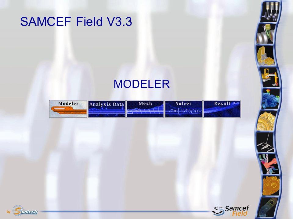 MODELER SAMCEF Field V3.3