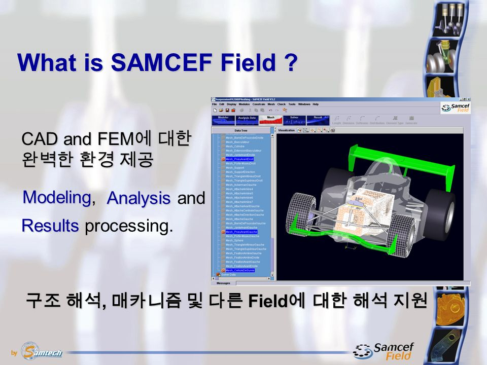 What is SAMCEF Field .