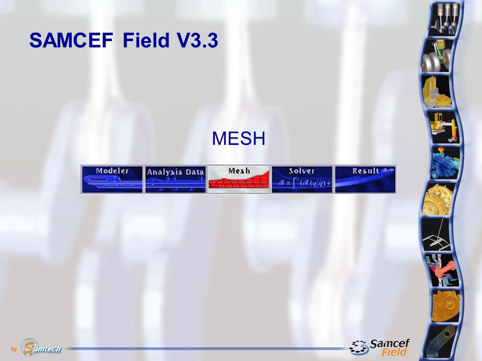 SAMCEF Field V3.3 MESH
