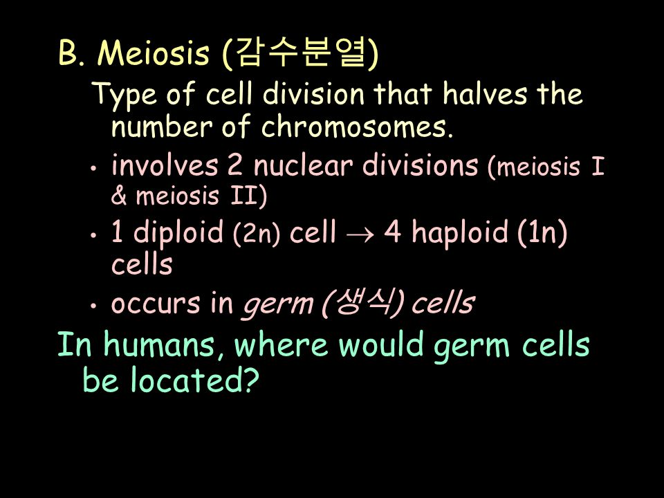 B. Meiosis ( 감수분열 ) Type of cell division that halves the number of chromosomes.