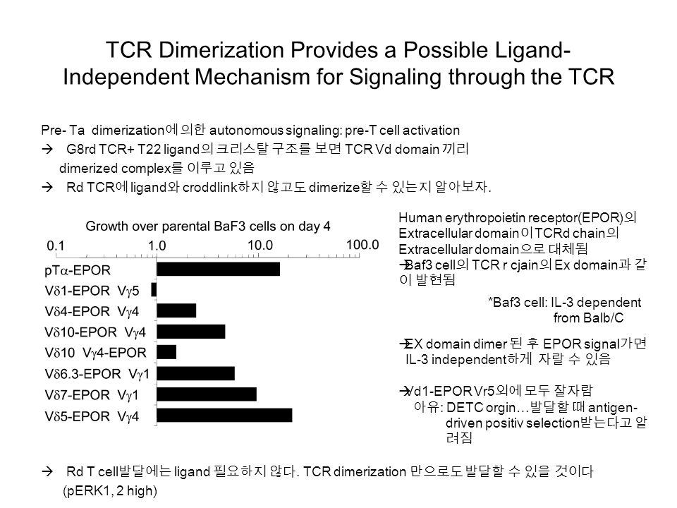 TCR Dimerization Provides a Possible Ligand- Independent Mechanism for Signaling through the TCR Pre- Ta dimerization에 의한 autonomous signaling: pre-T cell activation  G8rd TCR+ T22 ligand의 크리스탈 구조를 보면 TCR Vd domain 끼리 dimerized complex를 이루고 있음  Rd TCR에 ligand와 croddlink하지 않고도 dimerize할 수 있는지 알아보자.