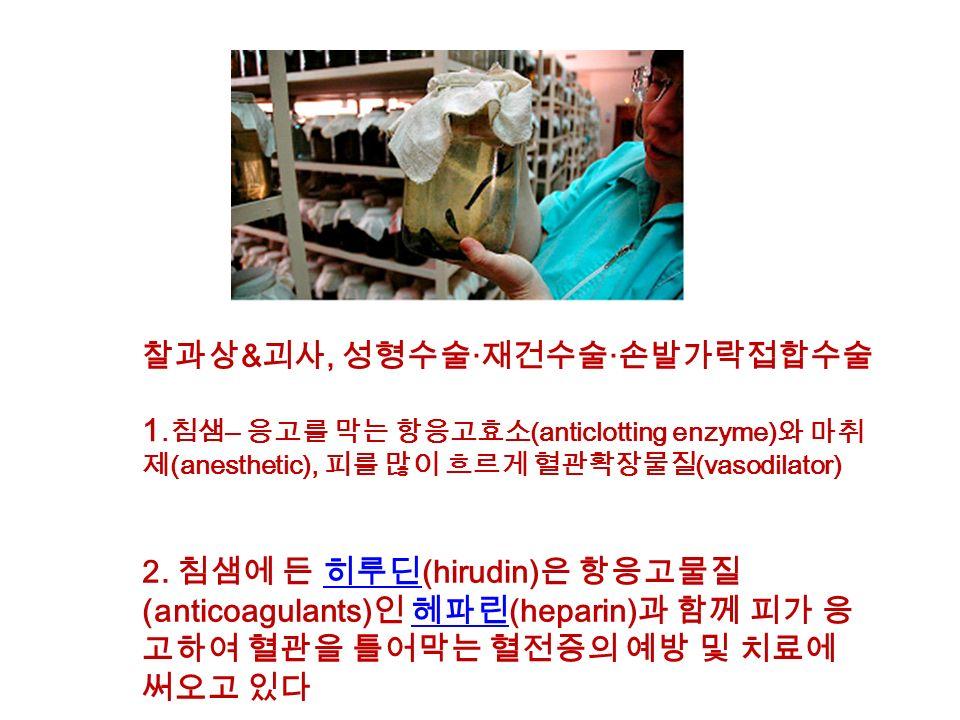 찰과상 & 괴사, 성형수술 · 재건수술 · 손발가락접합수술 2.