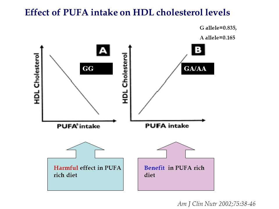 Effect of PUFA intake on HDL cholesterol levels GGGA/AA G allele=0.835, A allele=0.165 Harmful effect in PUFA rich diet Benefit in PUFA rich diet Am J Clin Nutr 2002;75:38-46