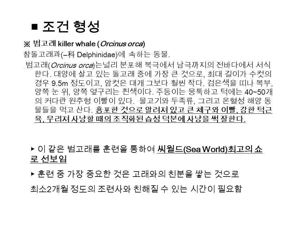 ▶ 이 같은 범고래를 훈련을 통하여 씨월드 (Sea World) 최고의 쇼 로 선보임 ▶ 훈련 중 가장 중요한 것은 고래와의 친분을 쌓는 것으로 최소 2 개월 정도의 조련사와 친해질 수 있는 시간이 필요함 ※ 범고래 killer whale (Orcinus orca) 참돌고래과 (― 科 Delphinidae) 에 속하는 동물.