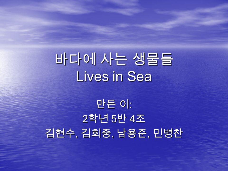 바다에 사는 생물들 Lives in Sea 만든 이 : 2 학년 5 반 4 조 김현수, 김희중, 남용준, 민병찬