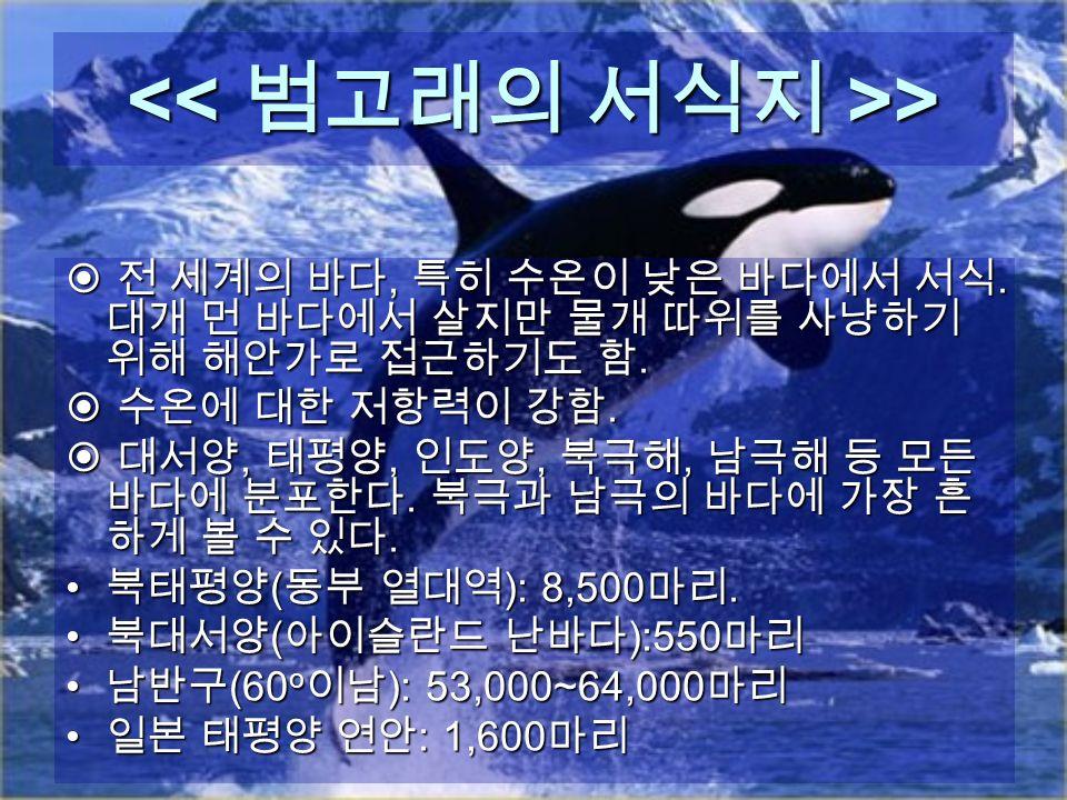 > >  전 세계의 바다, 특히 수온이 낮은 바다에서 서식. 대개 먼 바다에서 살지만 물개 따위를 사냥하기 위해 해안가로 접근하기도 함.