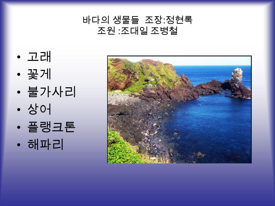 바다의 생물들 조장 : 정현록 조원 : 조대일 조병철 고래 꽃게 불가사리 상어 플랭크톤 해파리