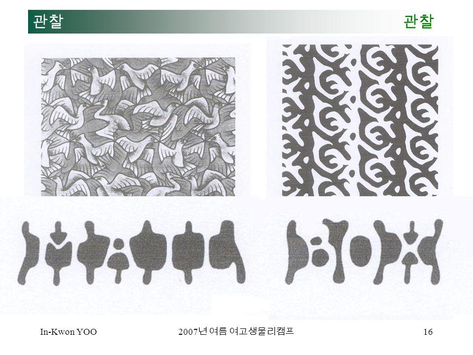 In-Kwon YOO 2007 년 여름 여고생물리캠프 16 관찰