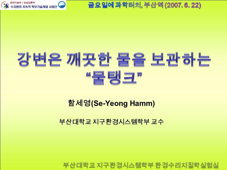 함세영 (Se-Yeong Hamm) 부산대학교 지구환경시스템학부 교수