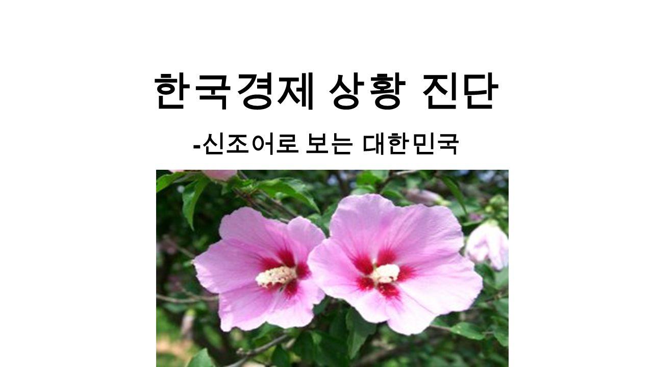 한국경제 상황 진단 - 신조어로 보는 대한민국