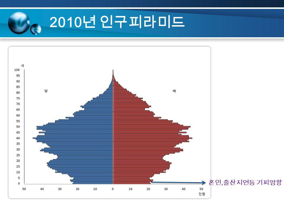 2010 년 인구피라미드 혼인, 출산지연등 기피영향