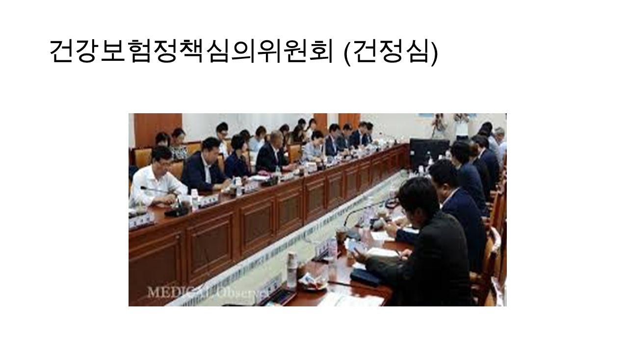 건강보험정책심의위원회 ( 건정심 )