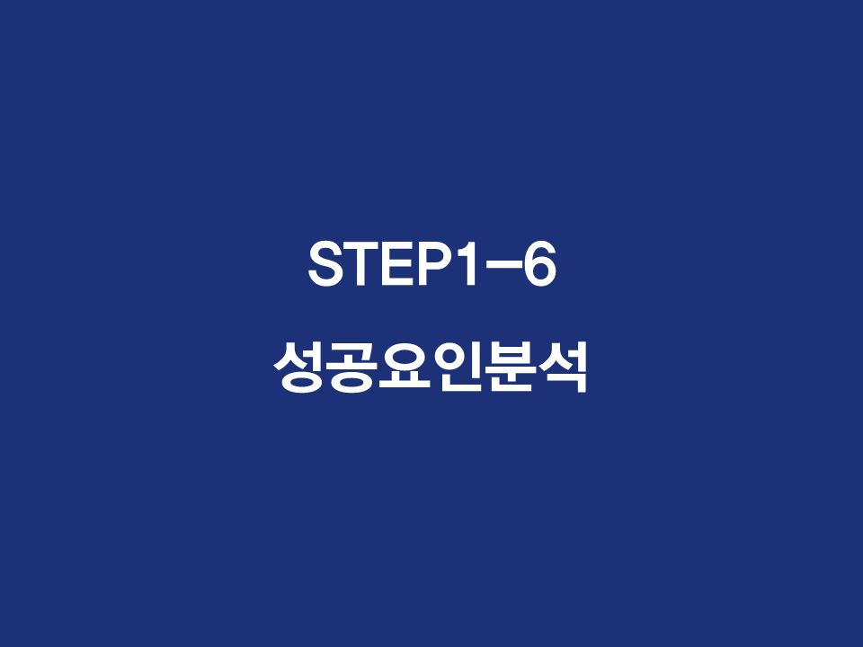 STEP1-6 성공요인분석