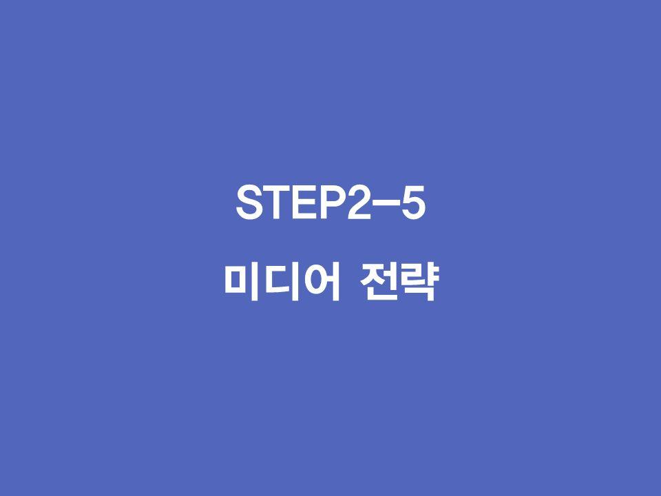 STEP2-5 미디어 전략