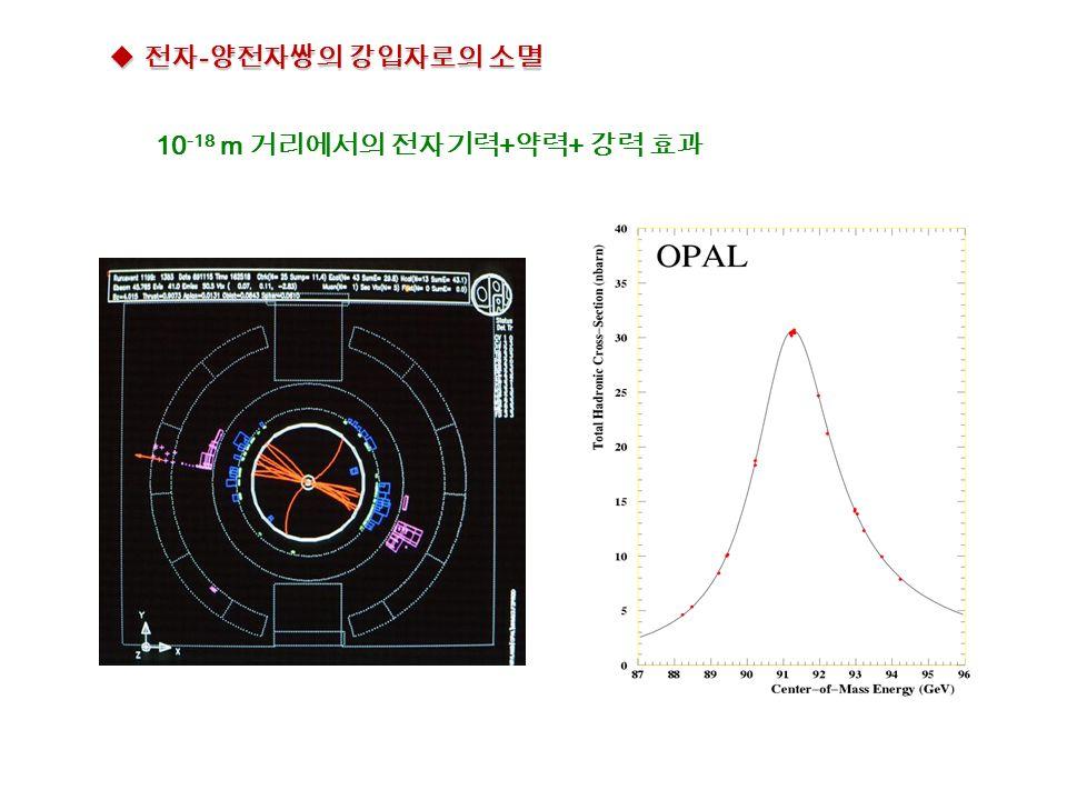  전자 - 양전자쌍의 강입자로의 소멸 10 -18 m 거리에서의 전자기력 + 약력 + 강력 효과