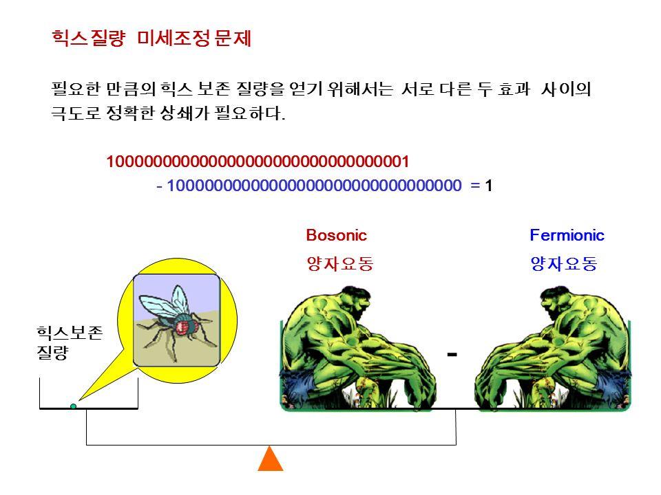 힉스질량 미세조정 문제 필요한 만큼의 힉스 보존 질량을 얻기 위해서는 서로 다른 두 효과 사이의 극도로 정확한 상쇄가 필요하다.