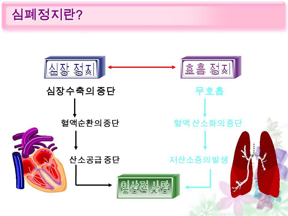 혈액순환의 중단 산소공급 중단 혈액 산소화의 중단 저산소증의 발생 심장수축의 중단무호흡 심폐정지란