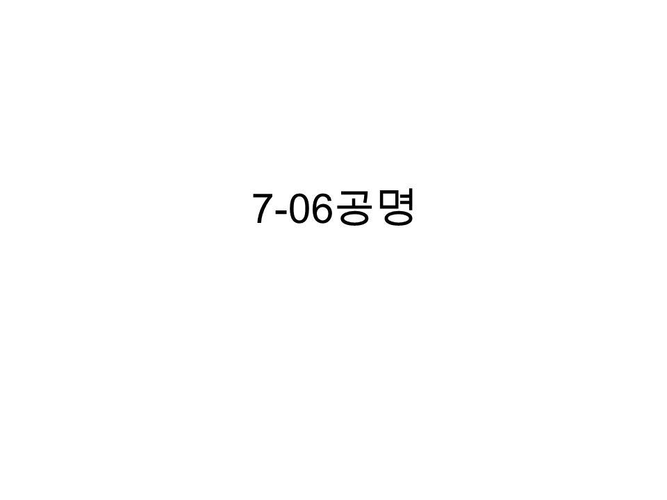7-06 공명