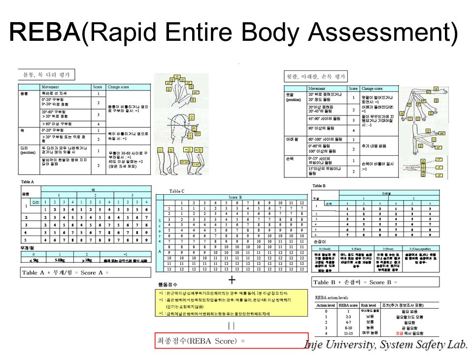 REBA(Rapid Entire Body Assessment) Inje University, System Safety Lab.