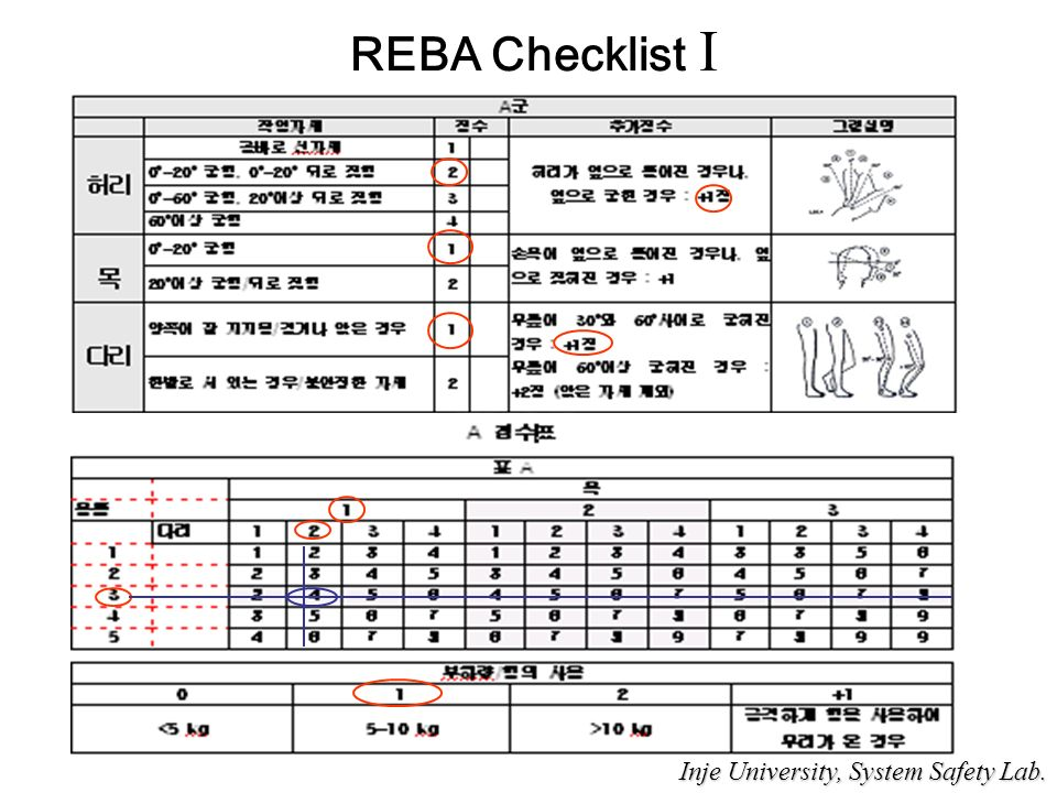 REBA Checklist I Inje University, System Safety Lab. Inje University, System Safety Lab.