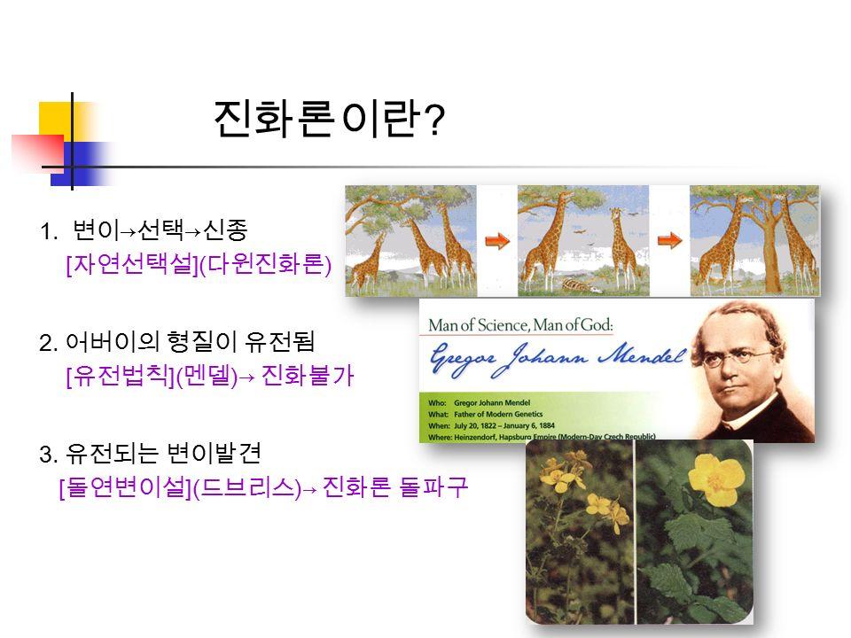 진화론이란 . 1. 변이 → 선택 → 신종 [ 자연선택설 ]( 다윈진화론 ) 2. 어버이의 형질이 유전됨 [ 유전법칙 ]( 멘델 )→ 진화불가 3.