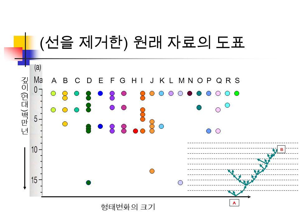 형태변화의 크기 BCDEFGHIJ ( 선을 제거한 ) 원래 자료의 도표 KLMNOPQRSA B A