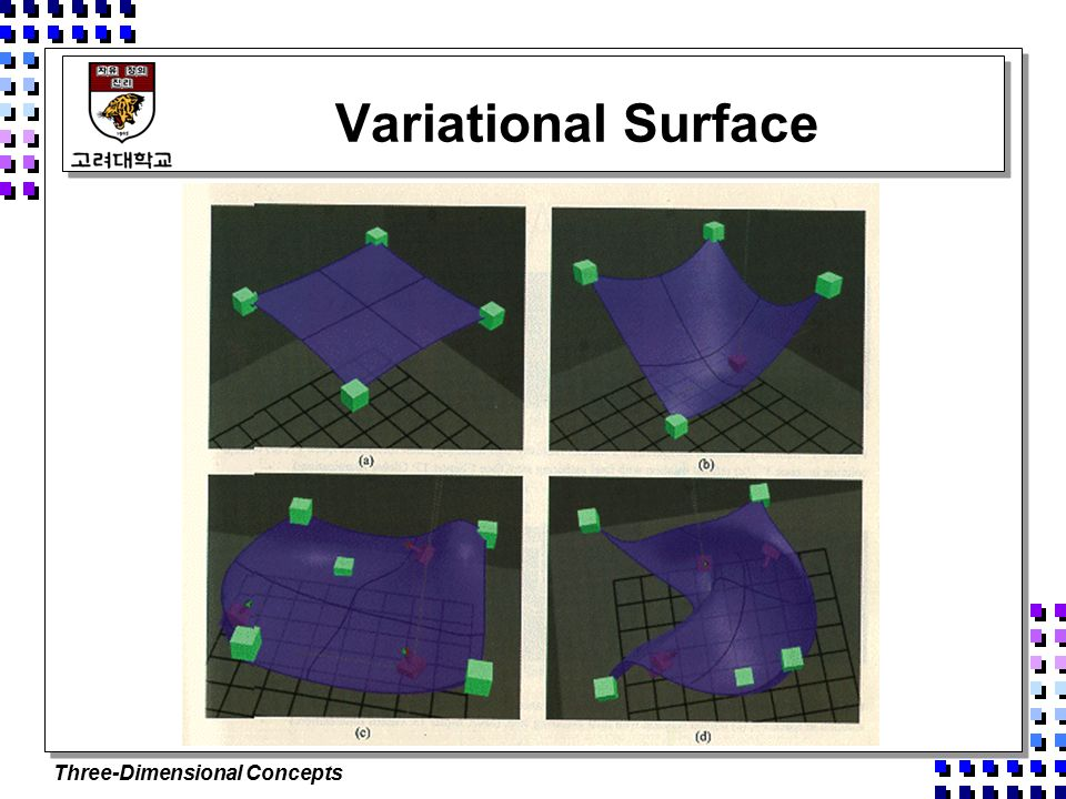 Three-Dimensional Concepts Variational Surface
