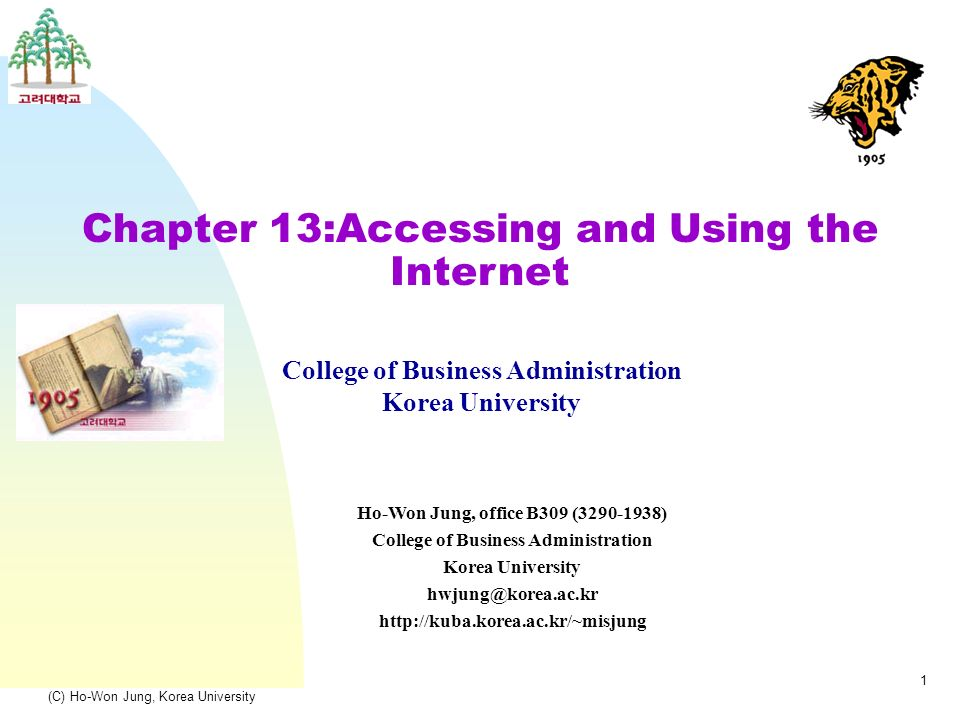 (C) Ho-Won Jung, Korea University 1 Chapter 13:Accessing and Using the Internet College of Business Administration Korea University Ho-Won Jung, office B309 ( ) College of Business Administration Korea University