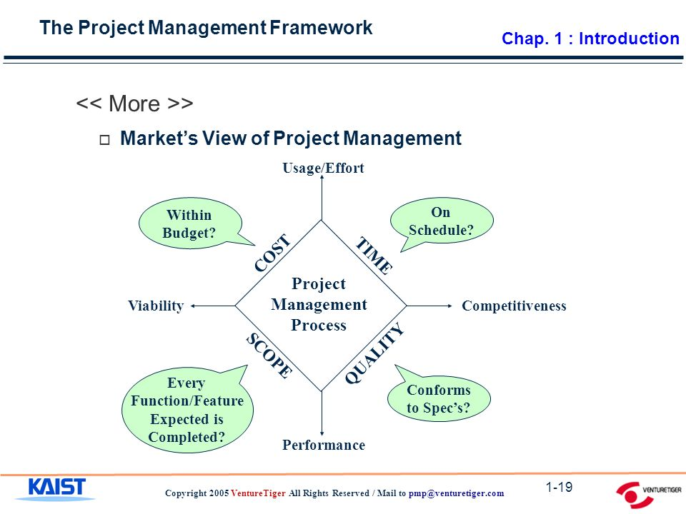The Project Management Framework Copyright 2005 VentureTiger All Rights Reserved / Mail to 1-19 > Project Management Process TIME SCOPE QUALITY COST CompetitivenessViability Usage/Effort Performance On Schedule.