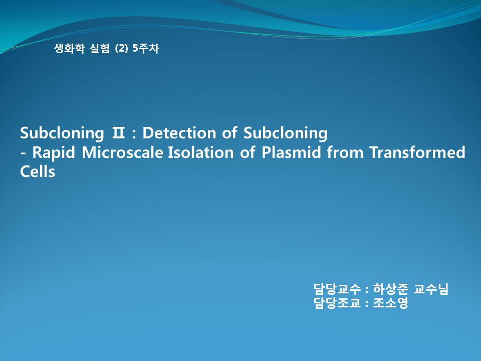 생화학 실험 (2) 5주차 Subcloning Ⅱ : Detection of Subcloning - Rapid Microscale Isolation of Plasmid from Transformed Cells 담당교수 : 하상준 교수님 담당조교 : 조소영