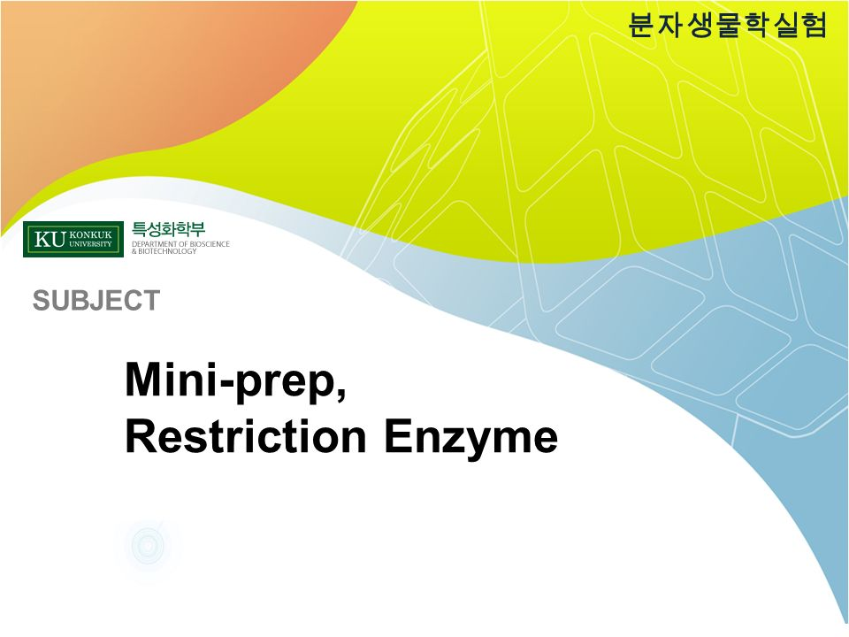 Mini-prep, Restriction Enzyme 분자생물학실험 SUBJECT