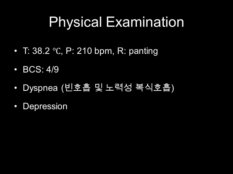 Physical Examination T: 38.2 ℃, P: 210 bpm, R: panting BCS: 4/9 Dyspnea ( 빈호흡 및 노력성 복식호흡 ) Depression