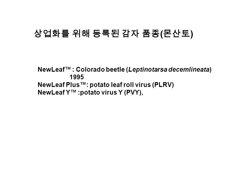 상업화를 위해 등록된 감자 품종 ( 몬산토 ) NewLeaf™ : Colorado beetle (Leptinotarsa decemlineata) 1995 NewLeaf Plus™: potato leaf roll virus (PLRV) NewLeaf Y™ :potato virus Y (PVY),