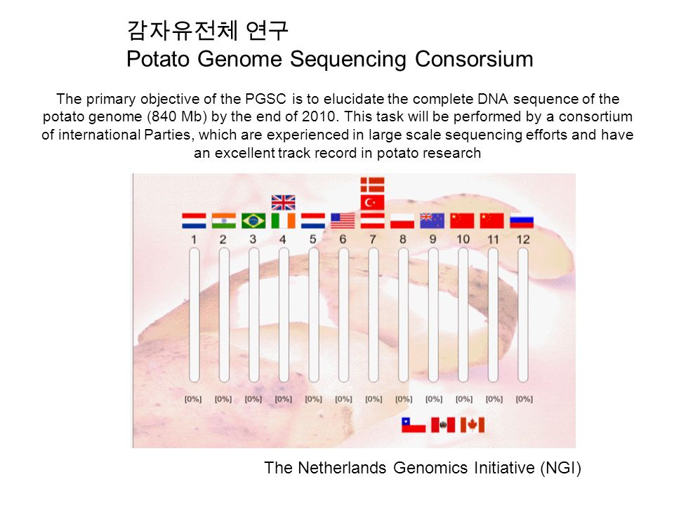 The primary objective of the PGSC is to elucidate the complete DNA sequence of the potato genome (840 Mb) by the end of 2010.