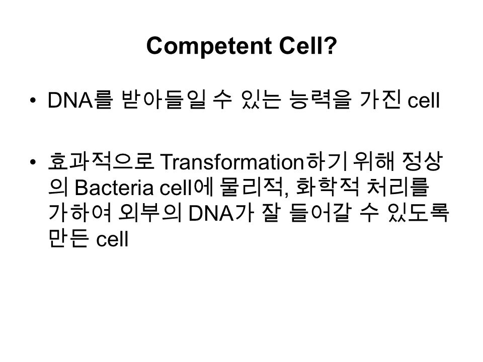 Competent Cell.