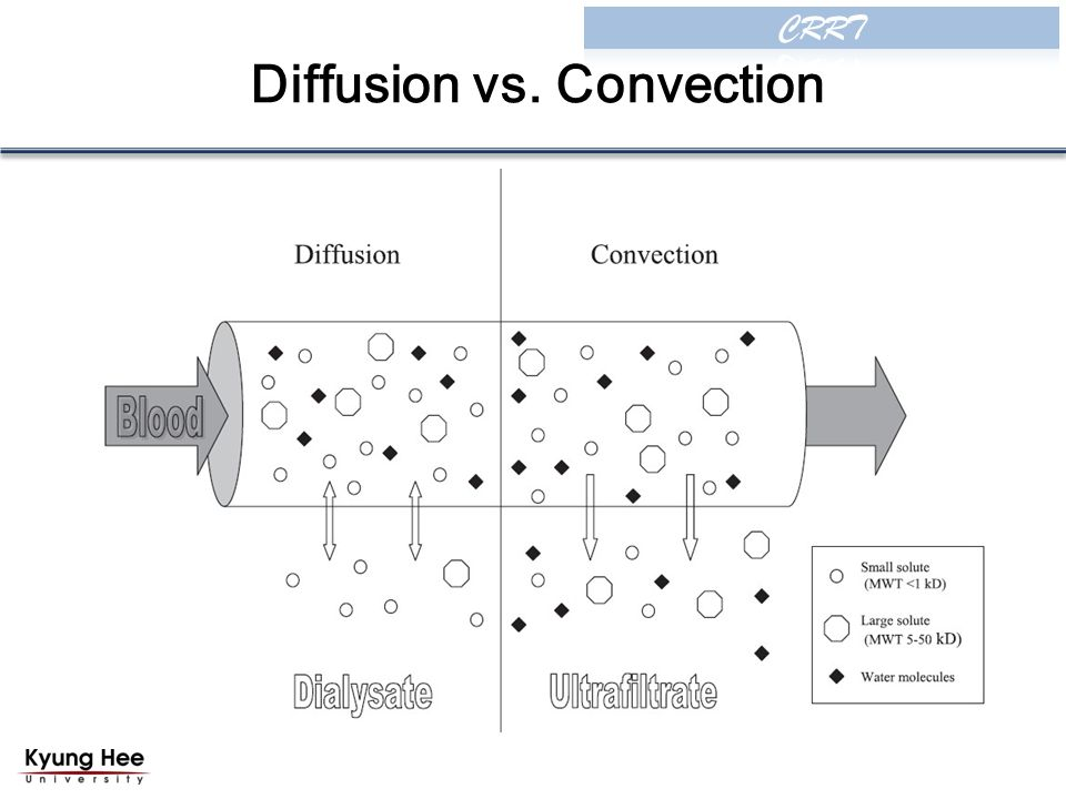 Diffusion vs. Convection