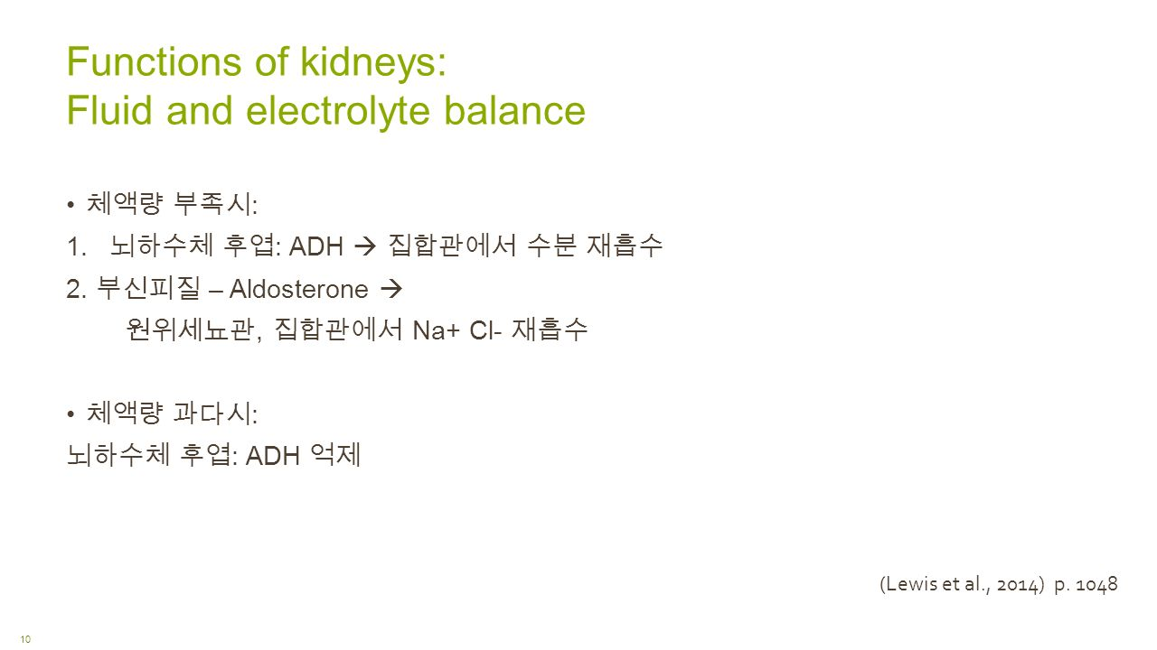 Functions of kidneys: Fluid and electrolyte balance 체액량 부족시 : 1.