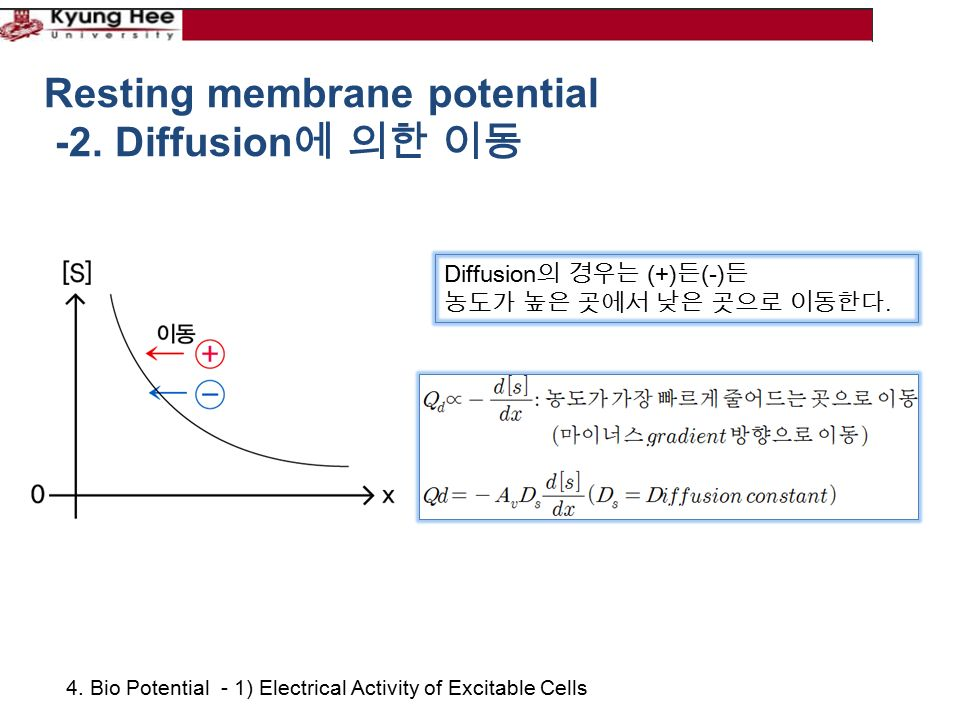 4. Bio Potential - 1) Electrical Activity of Excitable Cells Resting membrane potential -2.