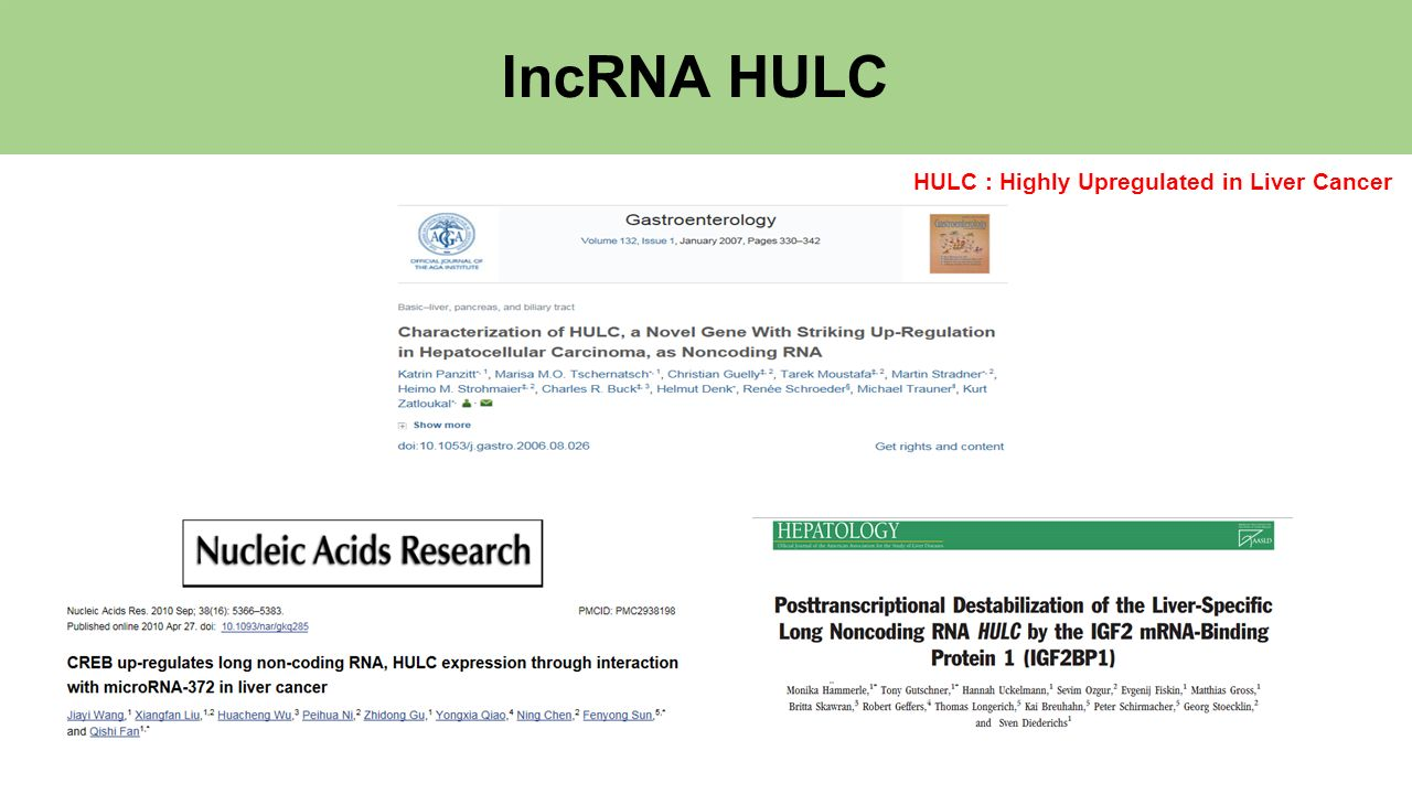 lncRNA HULC HULC : Highly Upregulated in Liver Cancer