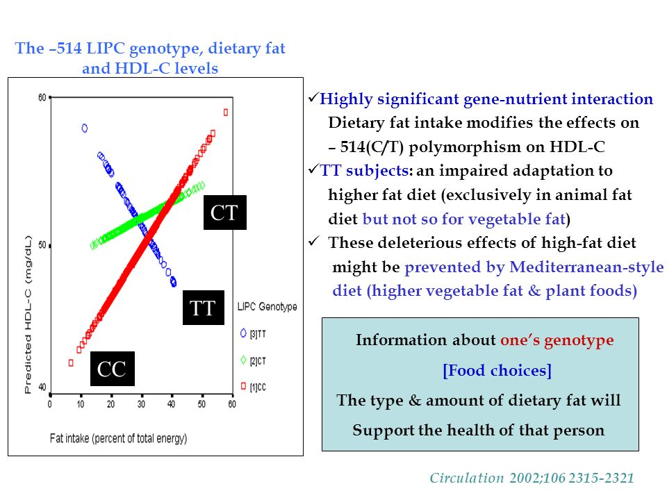 CT TT CC Highly significant gene-nutrient interaction Dietary fat intake modifies the effects on – 514(C/T) polymorphism on HDL-C TT subjects: an impaired adaptation to higher fat diet (exclusively in animal fat diet but not so for vegetable fat) These deleterious effects of high-fat diet might be prevented by Mediterranean-style diet (higher vegetable fat & plant foods) Information about one's genotype [Food choices] The type & amount of dietary fat will Support the health of that person The –514 LIPC genotype, dietary fat and HDL-C levels Circulation 2002;