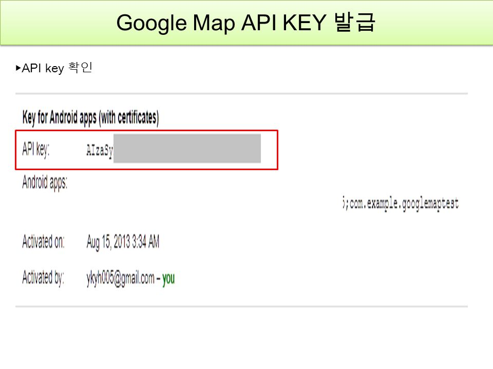 Google Map API KEY 발급 ▶ API key 확인