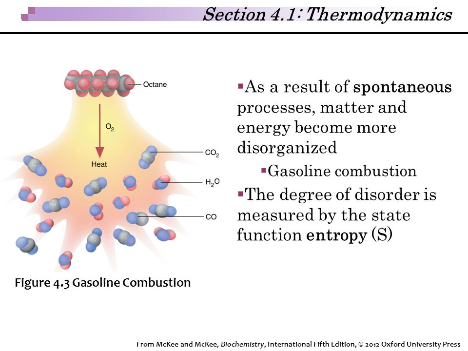 Section 4.1: Thermodynamics  As a result of spontaneous processes, matter and energy become more disorganized  Gasoline combustion  The degree of disorder is measured by the state function entropy (S) Figure 4.3 Gasoline Combustion From McKee and McKee, Biochemistry, International Fifth Edition, © 2012 Oxford University Press